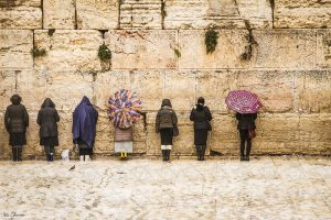Women at the Western Wall Iris Cohenian