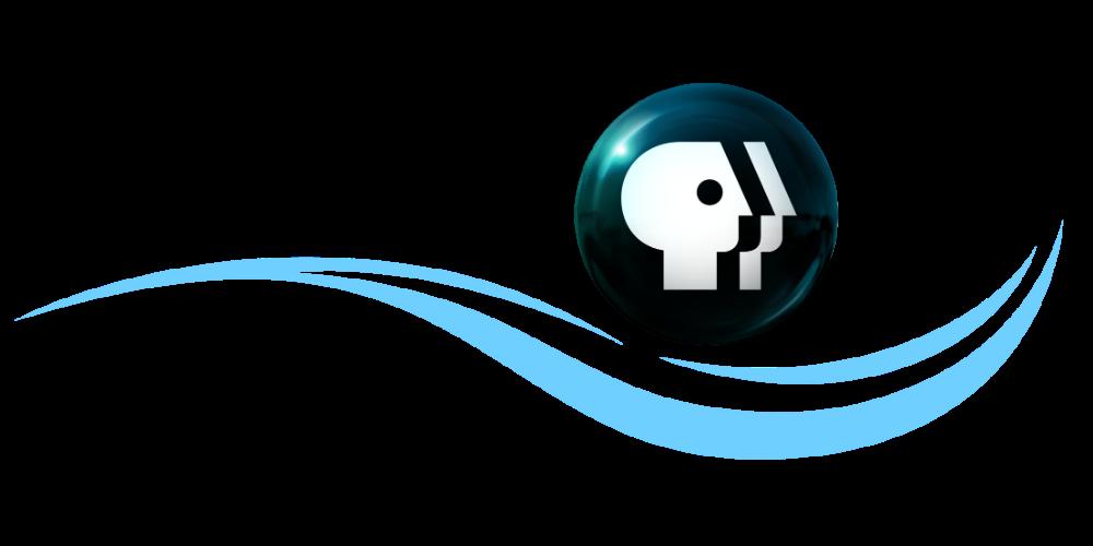 wpbt-color-logo-BSyqhHv
